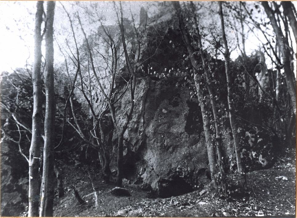 Wildpütz