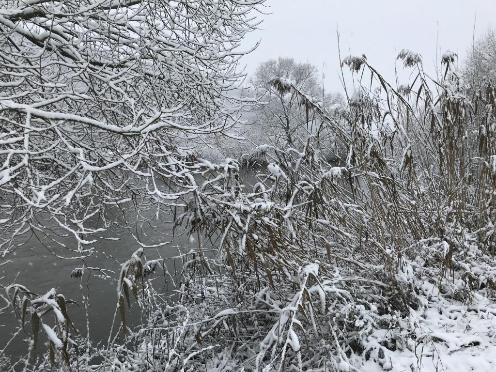 Winterstimmung am 1. Advent 2017