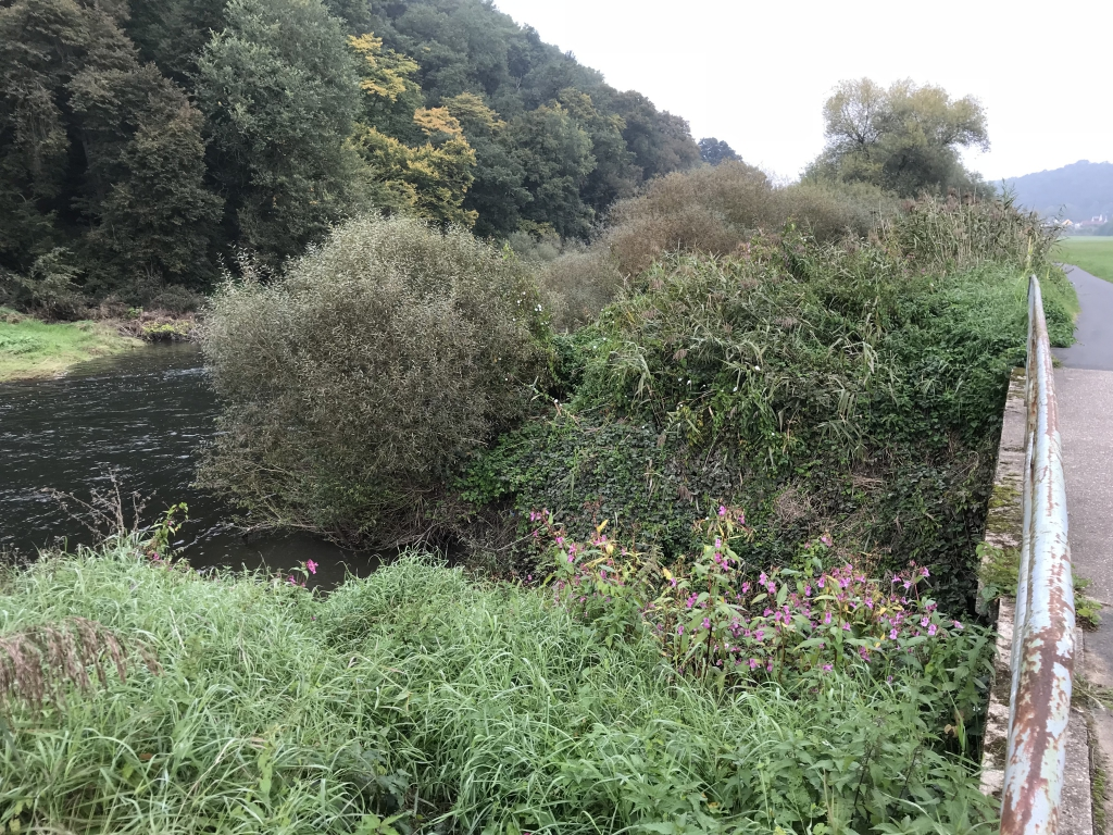 Die Mündung des Kerkerbach in die Lahn