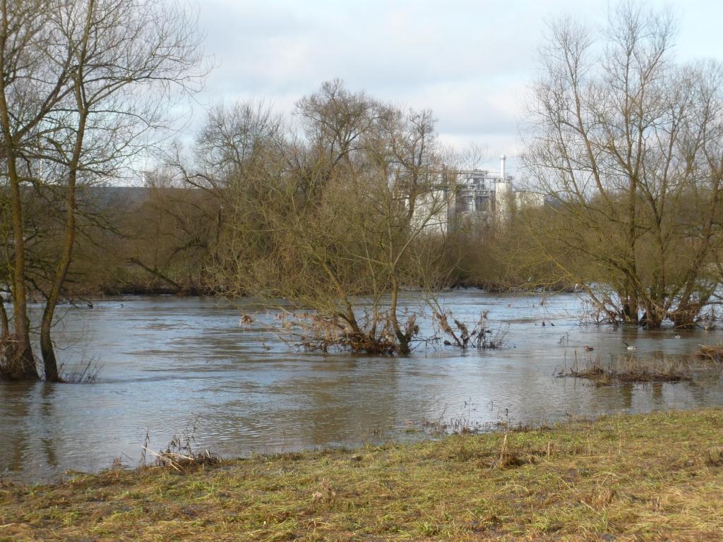 Hochwasser am Leinpfad in Steeden