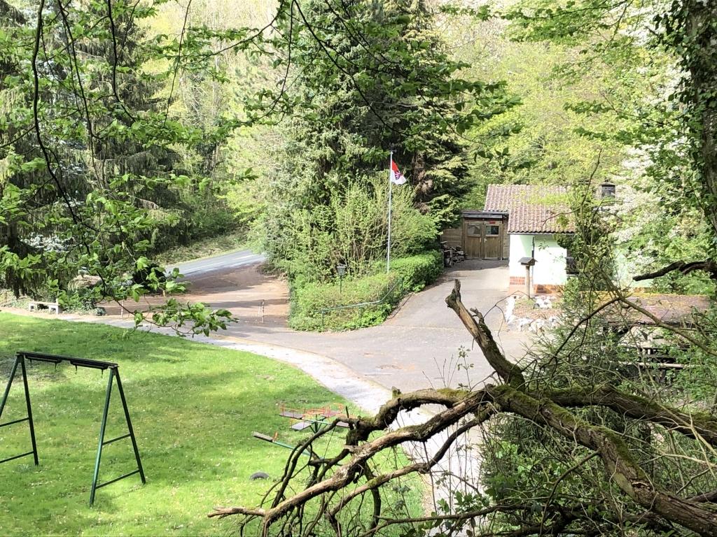Blick vom Waldweg im Kolben Holz zur Kleintieranlage