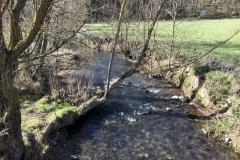 Der Kerkerbach bei der Brückes des Feldwegs von Schadeck (Bauernhof Zanger) Richtung Heumst