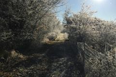 Zugang ehem. Staumauer des Stausees