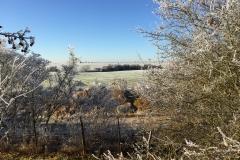 Blick auf das Niedertiefenbacher-Feld